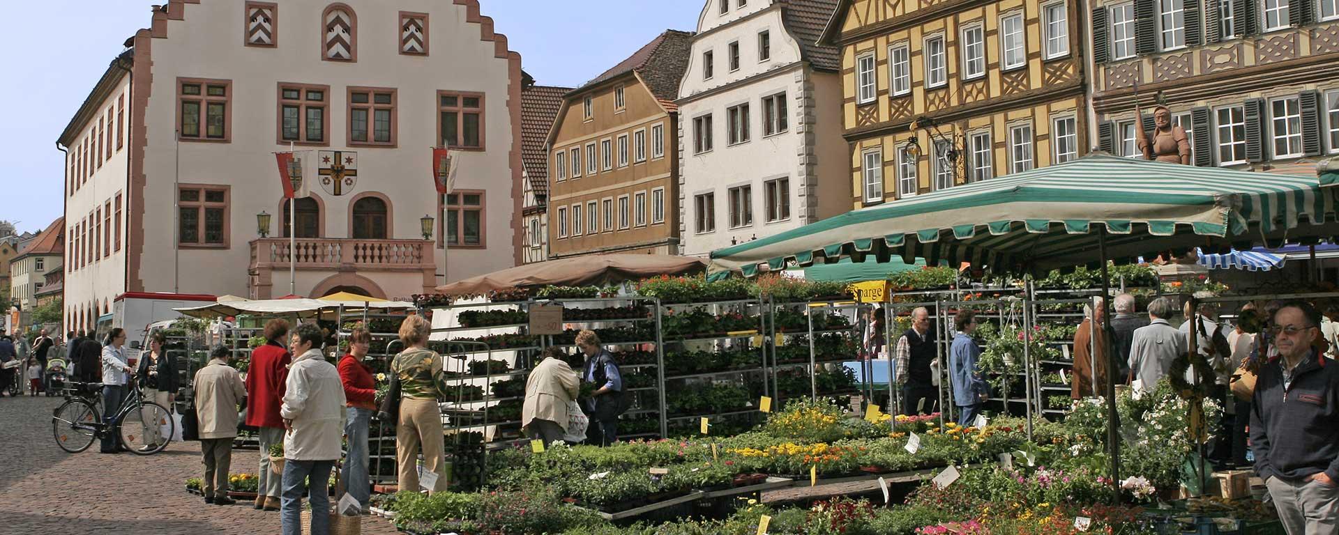 Bad Mergentheim: Kurort und Heilbad im Taubertal. Hotel SAVOY